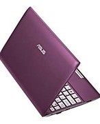 Asus 10.1 Inch 320GB V2 Netbook - Purple